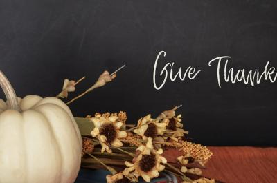 Top Tips for a Pet-Safe Thanksgiving